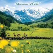 Almsommer 2020 by Various Artists