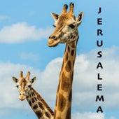 Jerusalema (Guitar Ukulele Version, Acoustic Backing Track) by Acoustica