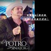 Seguimos Galopando by El Potro De Sinaloa