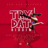 Try Dat Riddim de Various Artists