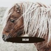 Dream von Vladimir Horowitz, Doris Day, Silvio Rodriguez, Tampa Red, Muggsy Spanier