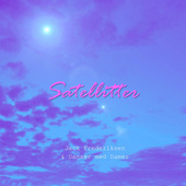 Satellitter by Jack Frederiksen