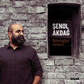 Bêvengiya Astaru by Şenol Akdağ