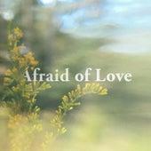 Afraid of Love de Beta Radio