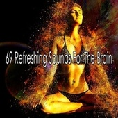 69 Refreshing Sounds for the Brain by Classical Study Music (1)