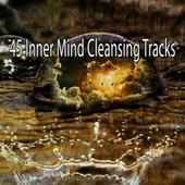 45 Inner Mind Cleansing Tracks by Lullabies for Deep Meditation