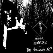 The Healmore - EP by Gasoline Invertebrate