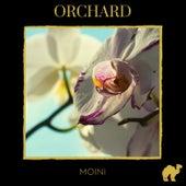 Orchard von Moini