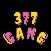 Tudo Colorido by 377 Gang