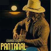 Pantanal de Eduardo Costa
