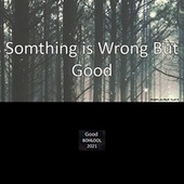 Somthing Is Wrong But Good by Bohlool