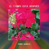 El Tiempo Está Después by Perro Segovia