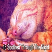 43 Soothed Through the Night by S.P.A