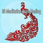 80 Meditation Brain Healing by Deep Sleep Meditation