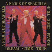 Dream Come True von A Flock of Seagulls