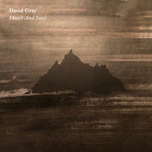 Heart and Soul by David Gray