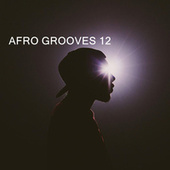 AFRO GROOVES 12 von Various Artists