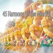 45 Harmony of the Mindful de Massage Tribe