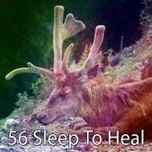 56 Sleep to Heal de Best Relaxing SPA Music