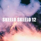 SKEELO SKEELO 12 by Various Artists