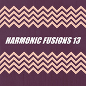 HARMONIC FUSIONS 13 de Various Artists
