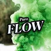 Puro Flow de Various Artists