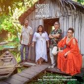 Encontros & Cantos da Amazônia (Ao Vivo) by Vários Artistas