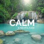 Calm & Peaceful Place de Kyle Lovett