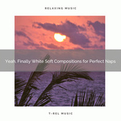 2020 Best: Yeah, Finally White Soft Compositions for Perfect Naps de White Noise Baby Sleep Music