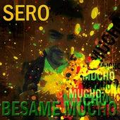 Besame Mucho by Sero