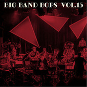 Big Band Bops, Vol. 15 de Dutch Swing College Band