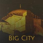 Big City de Various Artists