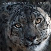 Celtic Tiger in Snow de Celtic Tiger In Snow