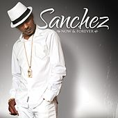Now & Forever by Sanchez
