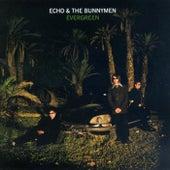 Evergreen di Echo and the Bunnymen