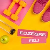 Edzésre Fel! by Various Artists