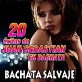 20 Exitos de Joan Sebastian en Bachata de Bachata Salvaje