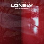 Lonely (Besomorph Remix) de Tujamo