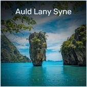 Auld Lany Syne by Various Artists