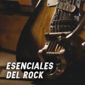 Esenciales del Rock de Various Artists