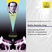 The Welte Mignon Mystery, Vol. 15 by Gustav Mahler