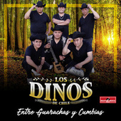 Entre Guarachas y Cumbias by Los Dinos de Chile