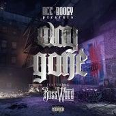 Way Gone von Aceboogy