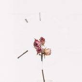 Flower de Shoo