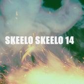 SKEELO SKEELO 14 von Various Artists