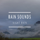 Night Rain von Rain Sounds (2)