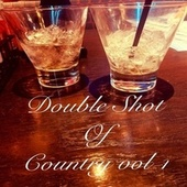 Double Shot of Country, Vol. 1 von Various Artists
