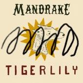 Tigerlily de Mandrake