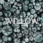 Willow von MusicWithSagar