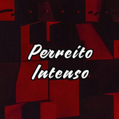 Perreito Intenso by Various Artists